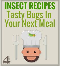 These insect recipes allow you to create some tasty bug treats ranging from the less crunchy (cricket cookies) to the more adventurous (grasshopper kabobs). Tasty, Yummy Food, Kabobs, Cricket, Bugs, Insects, Treats, Cookies, Learning