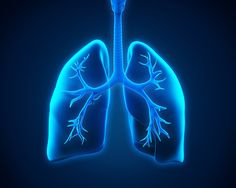 Bronchitis is a deep cough that can accompany the cold or flu. To combat it, try these Bronchitis Natural Remedies!
