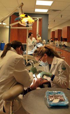 Dental Assistant: http://watc.edu/healthcare/degree-certificate-programs/dental-assistant-aas/#
