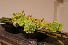 Light green floral arrangement with Anthurium, Orchid, Hydrangea and Bamboo branches | Bloematelier Fleur  Geur - Portfolio
