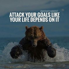 #morningthoughts #quote Attack your goals like your life depended on it