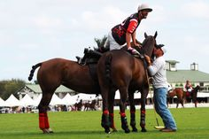 The Scout Guide Equestrian: During the Piaget USPA Gold Cup on Sunday, March 8...