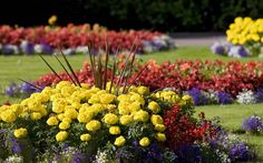 Small Flower Rock Garden Designs | ANNUAL FLOWER BEDS : DESIGNS THAT WORK University Of Maine …