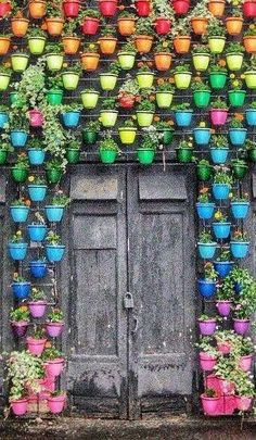 A rainbow of potted plants greets you at this door in Moscow, Russia. A rainbow of potted plants Garden Art, Garden Design, Garden Tips, Garden Ideas, Rustic Doors, Rainbow Wall, Rainbow House, Over The Rainbow, Doorway