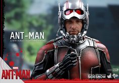 The Ant-Man Sixth Scale Figure by Hot Toys is now available at Sideshow.com for fans of Marvel's Ant-Man and Paul Rudd.
