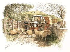'Counting Sheep' seen at the foot of Glastonbury Tor, available as Ltd Edition print