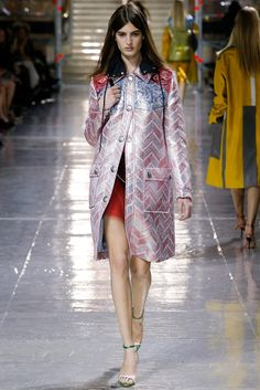 Miu Miu Fall 2014 Ready-to-Wear Fashion Show - Elodia Prieto (SILENT)