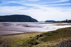 From @allgood65  Low Tide - Colchester County Nova Scotia . . . #eastcoast #explorehalifax #sonya6000 #adventure #lightroom #halifaxnoise #canada #travelnovascotia #discoverhalifax #exploring_shotz #instagramers #instagood #igers_novascotia #justgoshoot #visitnovascotia #naturephotography #sonyalpha #atlanticcanada #exlporenovascotia #nature #novascotiatrails #ocean #waves #outdoorlife #colchester