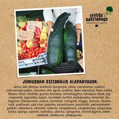 A paradicsom a burgonyafélék családjába tartozik, tudtátok? Edd, Zucchini, Blog, Vegetables, Blogging, Vegetable Recipes, Veggies