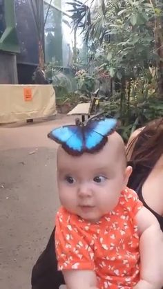 Funny Videos For Kids, Cute Baby Videos, Cute Animal Videos, Funny Baby Memes, Funny Babies, Cute Babies, Cute Gif, Funny Cute, Cute Baby Animals