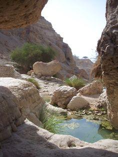 Hiking at En Gedi