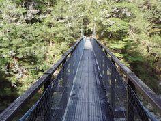 Nelson - Pelorus bridge