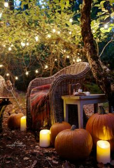 This looks so cozy!
