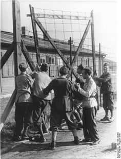 This is a propaganda photo showing Italian soldiers, taken prisoner by the Germans after Italy made peace with the Allies, removing the barbed wire fence from around their internment camp -- supposedly because they are going to be employed in civilian jobs. Truth of course was different.
