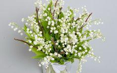 природа, цветок, весна, ландыши, цветы, букет, весенние