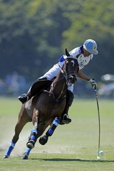 Adolfo Cambiaso Jr. back from NYC where he treated an injury playing with Valiente the Ylvisaker Cup Semis Adolfo Cambiaso, Polo Horse, Kings Game, Horse Paintings, Sport Of Kings, Polo Club, Horse Breeds, Horse Racing, Equestrian
