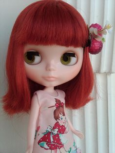 Catherine or Cathy is a red hair Blythe doll, originally Meowsy Wowsy.     She has two things that I commonly like, first her red hair and second she wears a cat mascot costume.    I always adore cats and since this doll is in a cat costume, I can't help falling in love with the doll.