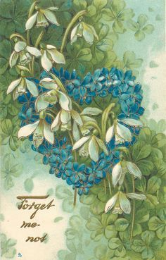 Vintage Card - Snowdrops and Forget-me-nots