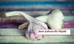 Roj Khali Pet Khayen Lahsun/garlic, Jane Kya Han Iske Khas 12 Fayde
