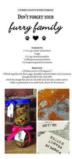Pumpkin Peanut Butter Dog Treats from Urban Olive www.urbanoliveapparel.com