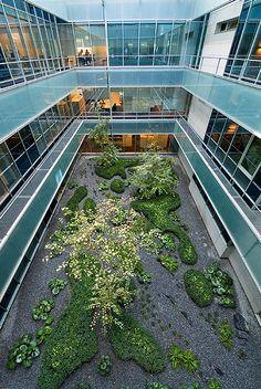 Gorbea-4-Atriums-by-Studio-Urquijo-Kastner-Landscape-Architecture-12