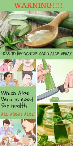 Aloe Vera Gel - Find out how everything works and how Aloe Vera is used! Solve natural health problems for this healing plant! Beauty Dupes, Beauty Hacks, Beauty 101, Diy Beauty, Beauty Products, Healthy Juice Drinks, Aleo Vera, Meditation For Health, Cleopatra Beauty Secrets