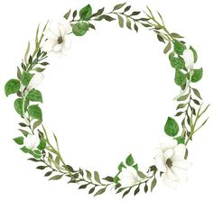 Green Wreath Clipart White Flowers Watercolor Wreath Anemone