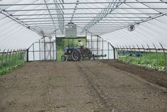 8 Convenient Spring Cleaning Tips for Your Greenhouse