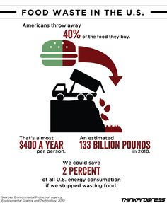 Food Waste - Americans throw out 40% of the food they buy - We could save 2% of all US energy consumption if we stopped wasting food.