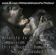 Atheism, Religion, God is Imaginary, Morality. Morality it dictated by compassion and empathy. It transcends humanity. No gods needed.