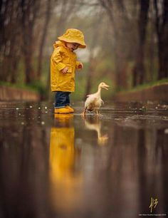 #photography #yellow #raincoat  #child #duck #wondersofnature