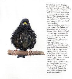 Sketchbook, art journal. Sketching in Nature: Winter bird sketching