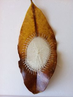 Man and nature collaborate to create a thing of beauty. This is amazing. Knitting on a magnolia leaf by Sonya Philip. This is awesome! #leaf #art