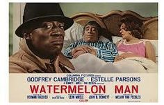 Watermelon Man - 1970 American comedy-drama film directed by Melvin Van Peebles. Written  Herman Raucher, story of an extremely bigoted 1960s white salesman - Jeff Gerber who wakes up one morning to find he has become black. Premise for film inspired by Franz Kafka's Metamorphosis and John Howard Griffin's autobio Black Like Me. Van Peebles' only studio film, Watermelon Man - a financial success, VMusic 4 Watermelon Man, written and performed by Van Peebles
