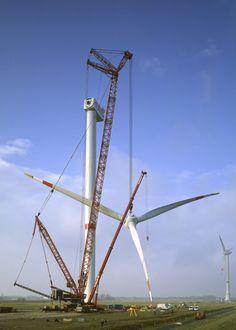 Liebherr Crawler Cranes