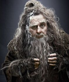 Radagast the Brown. Wow! His hair really looks like mine! (O_O)