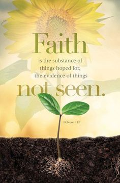 Faith Is Substance Things Hoped For Evidence Things Not Seen License Plate Frame