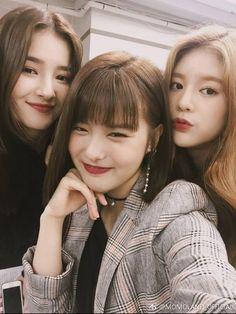 Kpop Girl Groups, Korean Girl Groups, Selfies, Daisy, Lord Krishna Wallpapers, Nancy Momoland, Future Photos, Kpop Merch, Two Girls