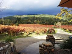 Patio at Little Vineyards Family Winery, Sonoma Valley.