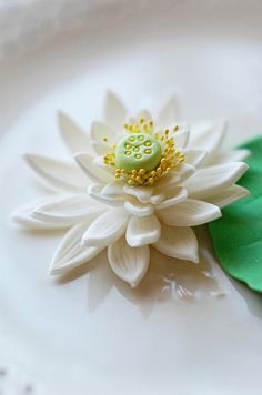 water lily by L' Atelier Vi, via Flickr
