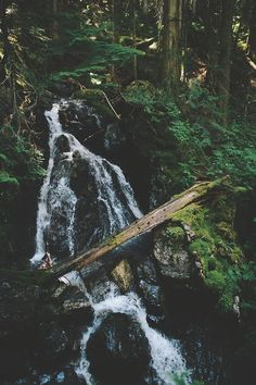 Happy Creek Falls ➾ Jayme Gordon