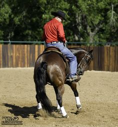 Riding Exercise #12: Backing Circles Under Saddle  Goal: To be able to yield the horse's hindquarters 360 degrees and then back an even circle and bring his front end through in a rollback. Eventually you should be able to back the horse in serpentines as well.  Learn more: https://www.downunderhorsemanship.com/Store/Product/MEDIA/D/254/