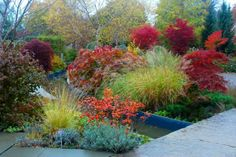 Here's some inspiration: Toronto Gardens: Garden colour without flowers