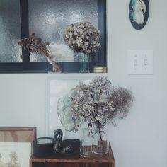kateさんの、100均,植物,アンティーク,DIY,雑貨,理系インテリア,ドライフラワー,ワイン木箱,薬瓶,ビーカー,珪藻土,アメリカンスイッチ,棚,のお部屋写真