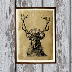 Crowned deer print Animal illustration Wildlife poster Antique paper  8.3 x 11.7 inches