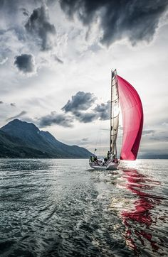 essenceofnxture:  Pink Sails