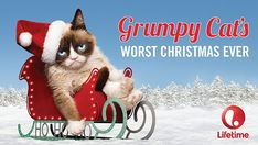 We all know that our best friends mean lots of love and that is what Christmas is all about. Snuggle in with your furry friends and enjoy these warm & 'fuzzy' Christmas movies! 😀 * * * * * GRUMPY CAT'S Worst Christmas Ever … Family Christmas Movies, Family Movies, Christmas Cats, Family Holiday, Film Reels, Original Movie, Grumpy Cat, Snuggles, Kitty