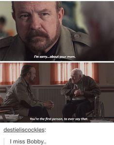 Bobby, an ever grumpy gentle soul