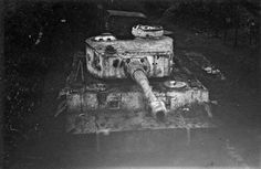 Tiger 921 from the panzer div. Totenkopf coated in winter camouflage near Balta, Ukraine March Tiger Ii, War Thunder, Tiger Tank, Ww2 Photos, War Image, Armored Fighting Vehicle, Military Pictures, World Of Tanks, Ww2 Tanks