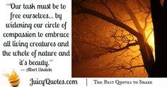 Quote About Beauty - Albert Einstein